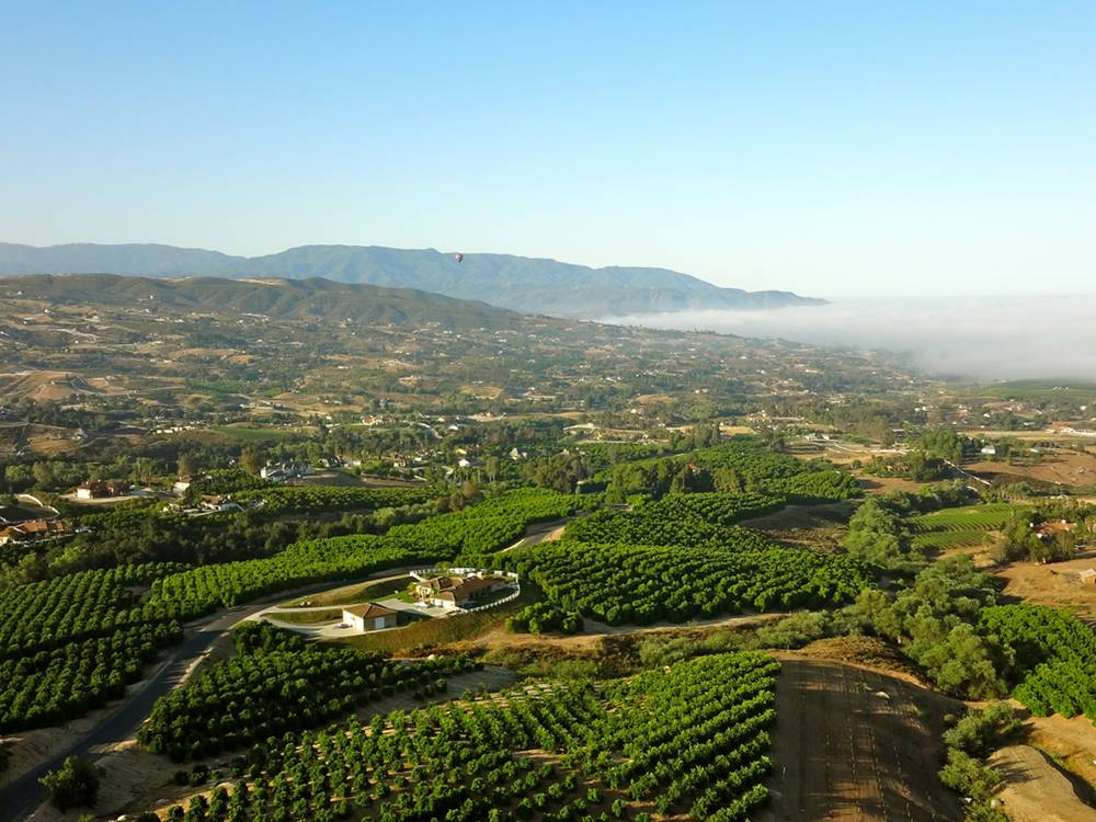 View of Temecula Wine Country from a Hot Air Balloon