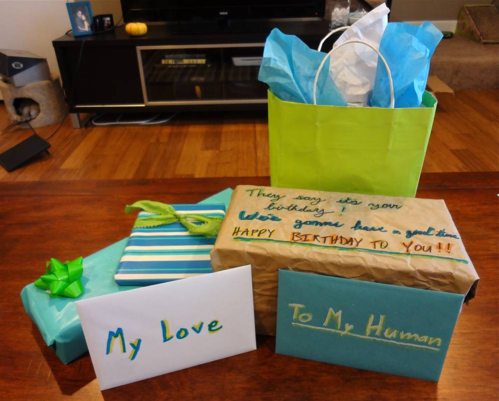Blue and Green Color Scheme Gift Wrapping